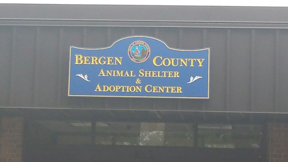 Bergen County Animal Shelter & Adoption Center | 100 United Ln, Teterboro, NJ, 07608 | +1 (201) 229-4600