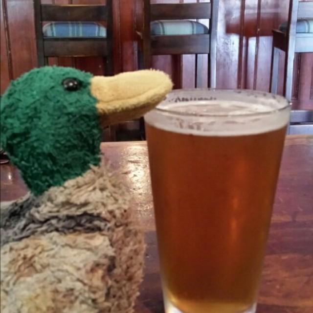 The Daniel OConnell Irish Pub and Restaurant | 165 Tynte Street, North Adelaide, South Australia 5006 | +61 8 8267 4032