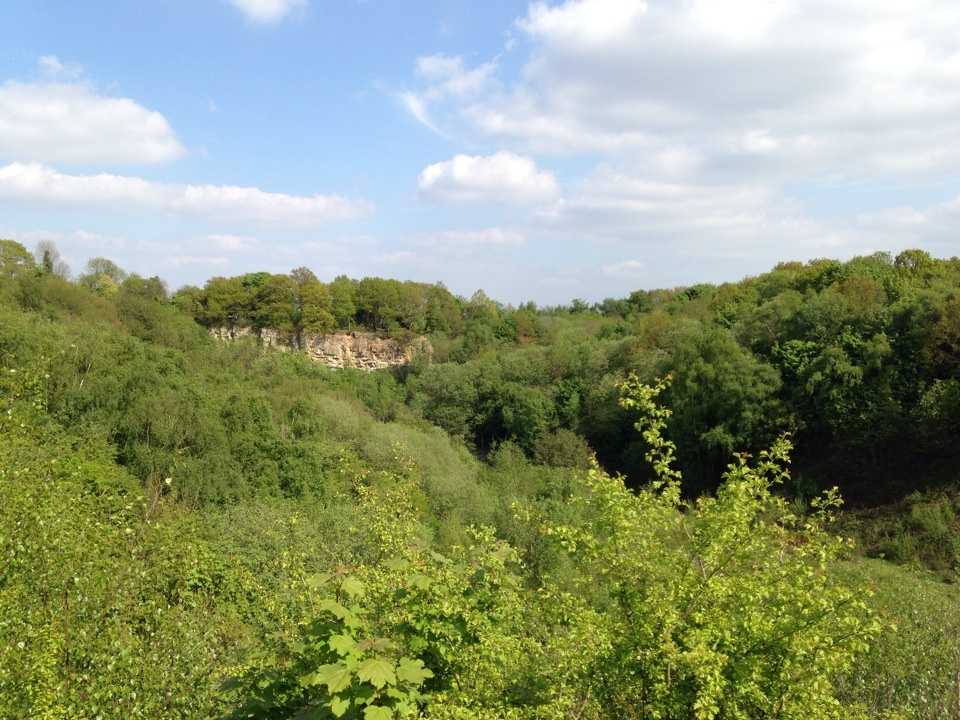 Saltwells Local Nature Reserve | Off Coppice Lane, Quarry Bank, Dudley DY5 1AX | +44 1384 812795