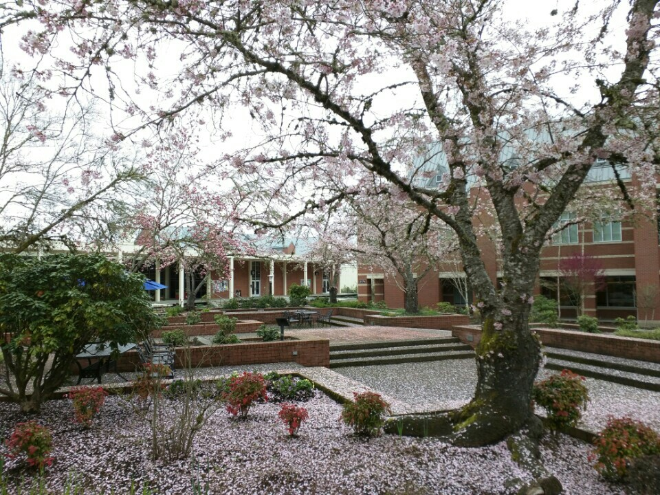 Pacific University Center for Peace and Spirituality | 2043 College Way, Forest Grove, OR, 97116 | +1 (503) 352-2032
