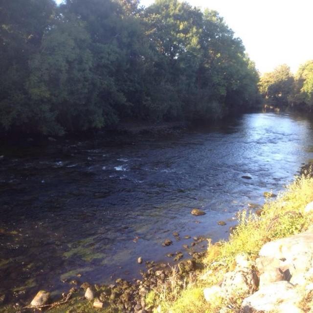 Crystal Springs B&B   Woodlawn Ballycasheen Road, Killarney   +353 64 663 3272