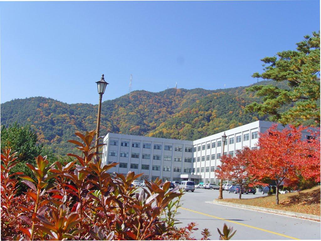 전산정보학과 School of Computer and Information Science | Chungcheongbuk-do 제천 579, Sinwoul-Dong | +82 43-649-1700