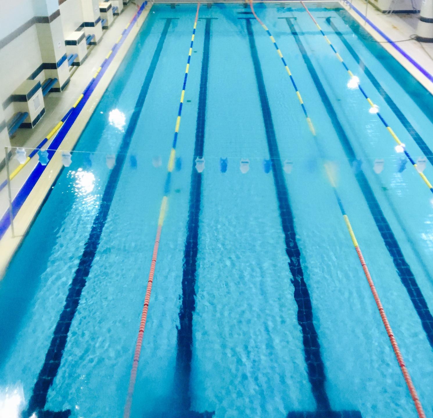 불광초등학교 체육문화센터 수영장 | 서울특별시 은평구 불광로 51 | +82 2-385-5191