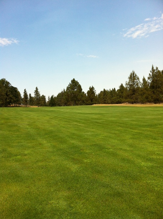 Fall River Valley Golf & Country Club   42889 Highway 299 E, Fall River Mills, CA, 96028   +1 (530) 336-5555