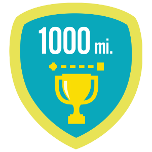 Fitbit 1k lifetime miles