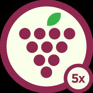 Wino - Level 5