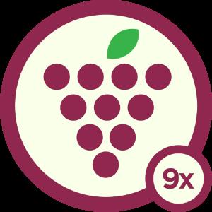 Wino - Level 9