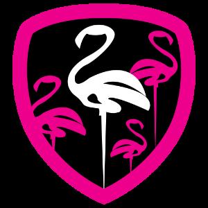 Flamingo Forever Fabulous