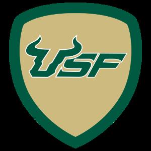 USF Bull Horns