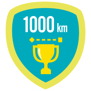 Fitbit 1k lifetime kilometers